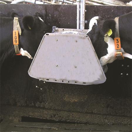 Ventil-Trogtränke Suevia Mod. 520