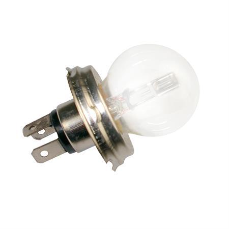 Glühlampe 12 V asymmetrisch