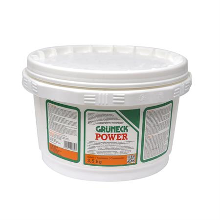 Abbeizer Grüneck Power 2,5 kg