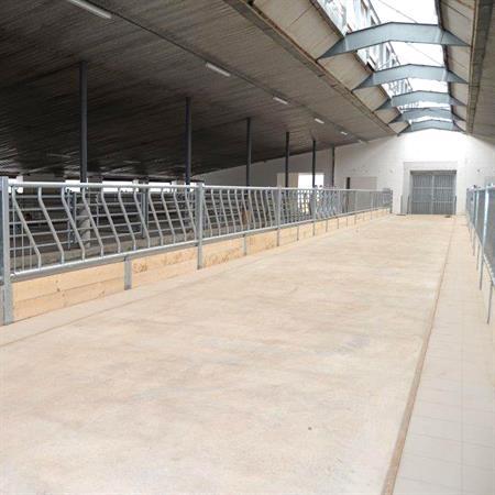 Schrägfressgitter für Großtiere 5 Plätze auf 3 m